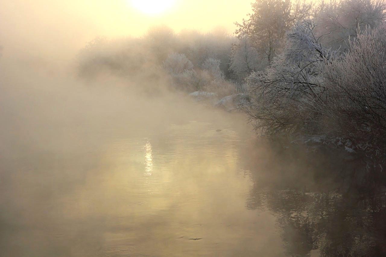 картинки на тему ночь и густой туман поможет освежить пространство