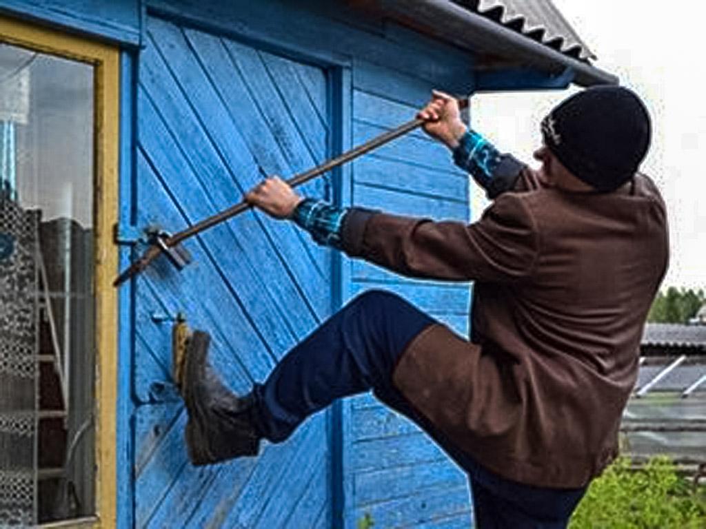 В Подмосковье задержаны дачные воры, работавшие по «семейному подряду»