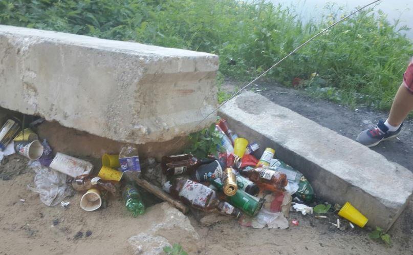 «Местные» отметили День экологии в Подмосковье