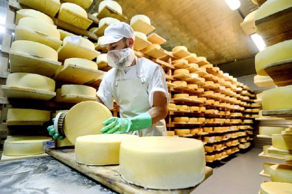 Новое предприятие по производству сыра появится в Дмитровском округе к осени